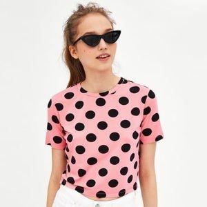 Zara Printed Cropped T-Shirt